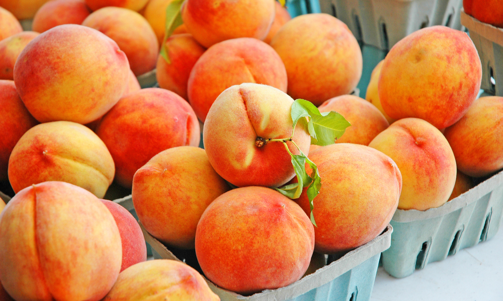 What's The Fuss About Fuzz: Why Do Peaches Even Have Fuzz?!